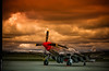 Glamorous Stang (~Clubber~) Tags: sky airplane aircraft aviation flight mustang warbird p51 glamourousgal