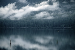 Reflection - Lake Quinault (sparth) Tags: morning trees lake reflection water clouds forest boat washington state july olympicpeninsula calm wa usm olympic peninsula 70200 2010 quinault ef70200mm 70200f4l f4l 70200l ef70200mmf4lusm 5dmkii