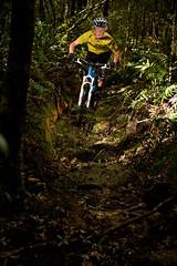 Sterling Valley MTB Track, Tas (vertigomtb) Tags: mountainbike tracks trails mtb tasmania tours