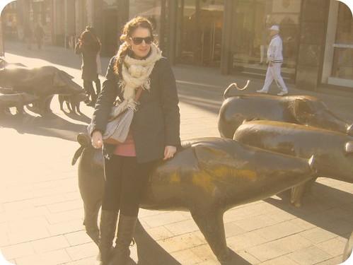 schweine_blog