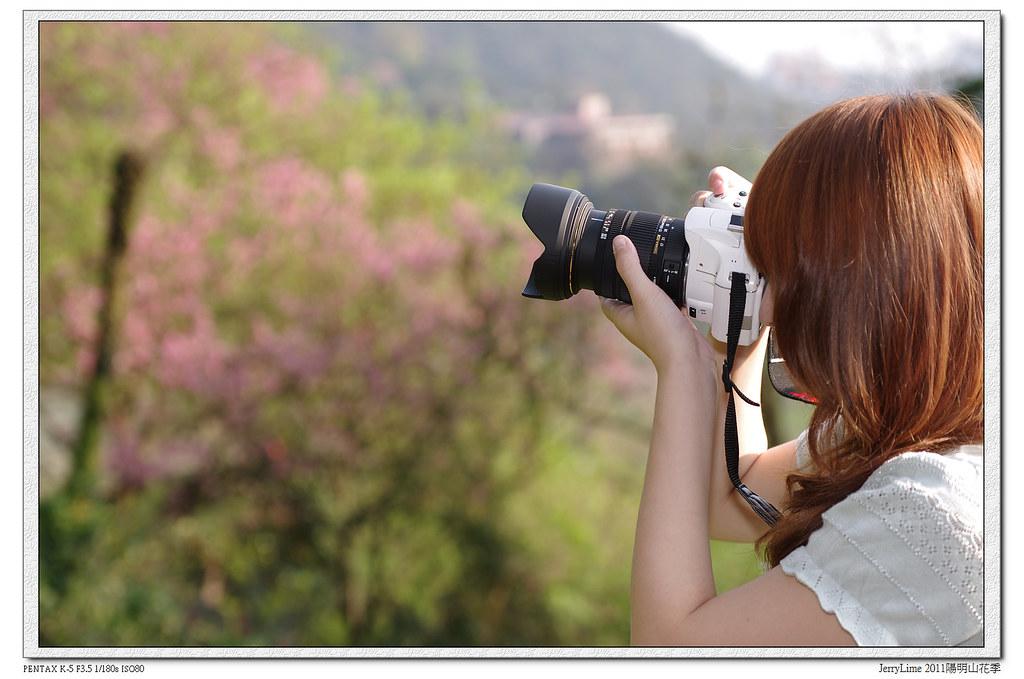 Sigma1750+DA535遊陽明山花季(新增Picasa Flickr圖床比較)