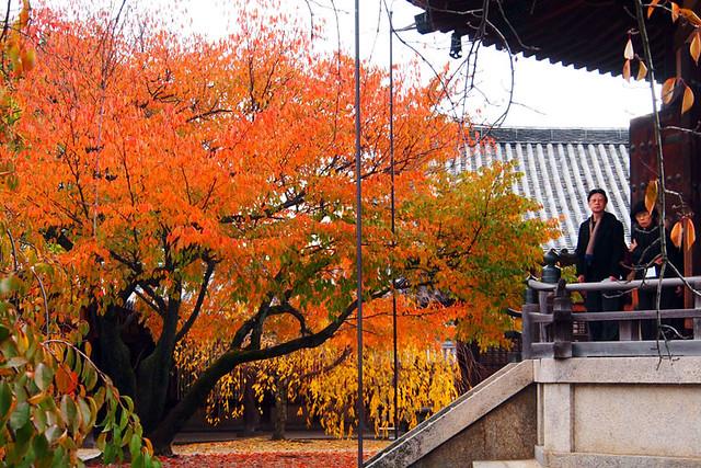 20101118_112443_法隆寺_夢殿(国宝)