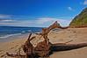 Driftwood (jcc55883) Tags: ocean hawaii nikon oahu driftwood pacificocean diamondhead kaalawaibeach nikond40 diamondheadroad