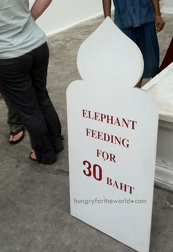30 baht to feed the elephant