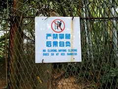 No Climing Anyong Climing (cowyeow) Tags: china classic strange sign danger warning fence asian climb weird dangerous wire funny asia beware chinese bad safety wrong climbing guangdong engrish badsign shenzhen instructions chinglish  misspelled funnysign misspell noclimbing wirechain funnychina chinesetoenglish