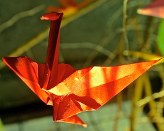 The Crane Tree 5/15 (Roger Hilleboe) Tags: origami cranes japanese legend promise fable wish