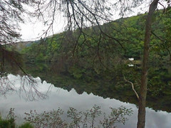 Reflections on Loch Ard (Majorshots) Tags: lochard stirling scotland trossachsnationalpark trossachs thetrossachs