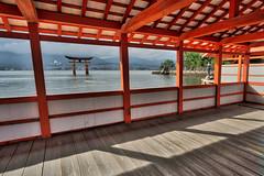 Hakone Shrine (cdagnaes) Tags: religion japan shrine miyajima hiroshima shinto itsukushima toori greattorishrine