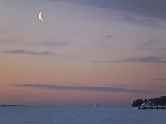 Moon and Ferry (BigWhitePelican) Tags: morning sea moon snow ice ferry clouds finland helsinki fujifilmfinepixhs10
