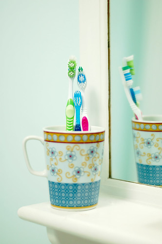 Toothbrush family portrait.