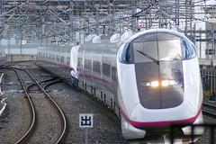 #11 komachi+hayate29@omiya (yui.kubo) Tags: japan saitama shinkansen omiya