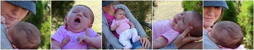 Five weeks old