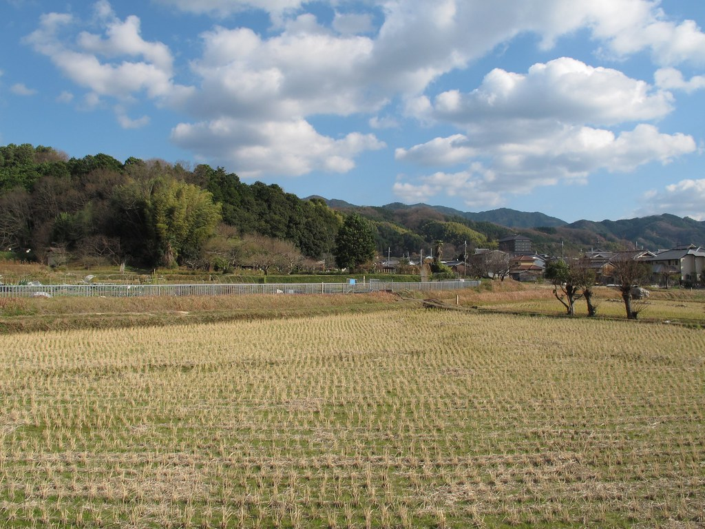 平尾山稲荷神社への道