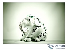 Jade Elephant 004