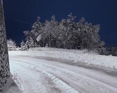 (Thorir Vidar) Tags: winter snow norway vinter no bergen hordaland snø sn sane åsane sn¿ thorir110112805658dpadng