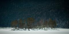 eibsee (bauer1328) Tags: schnee winter canon bayern see insel alpen eis bume 70200 eibsee zugspitze