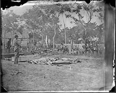 Dead Ready for Burial, at Fredericksburg, Virg...