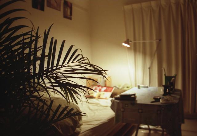 部屋のインテリアのフリー写真素材
