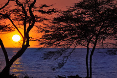 Kolea Sunset, Hawaii (HawaiianVirtualTours) Tags: sunset hawaii bigma bigisland waikoloa supershot sigma50500mm kolea brentwilliams colorphotoaward colorsofthenight flickraward flickrdiamond nikond5000 mygearandme mygearandmepremium mygearandmebronze mygearandmesilver mygearandmegold mygearandmeplatinum mygearandmediamond dblringexcellence tplringexcellence hawaiianvirtualtours