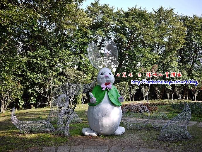 30 兔年鴻兔大展