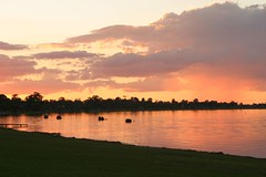 lbsunset211 (eyesofmark) Tags: sunset river southaustralia murray loxton riverland barmera renmark lakebonney