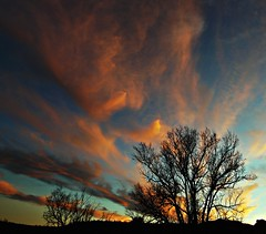 New Mexico Sky Lightz (Ph0tomas) Tags: trees sunset newmexico clouds sunrise landscape lumix g cottonwood g1 f4 714 vario mygearandme
