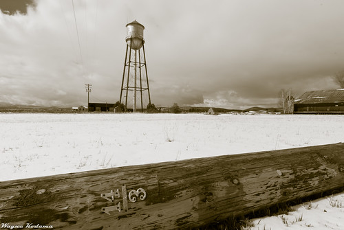 331/365 - Water Tower in Dorris, California