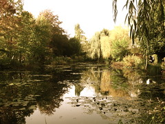 Monet's garden (elisepitt@ymail.com) Tags: france garden pond monet waterlillies