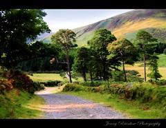 Celtic Spirit. Wicklow Mountains, Ireland (Jenny Rainbow) Tags: road trip travel trees ireland light shadow sky music mountains green nikon eire journey fields celtic wicklow celt d300 40shadesofgreen nikkor18200 selticspirit