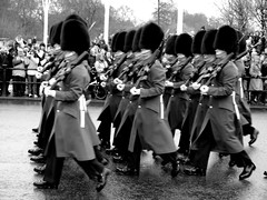 Buckingham Palace Guards (Clugg14) Tags: london guards maching 2011 blackwhitephotos buckinghampalaceguards olympuse450