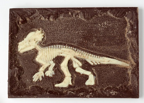 Chocolate Fossil