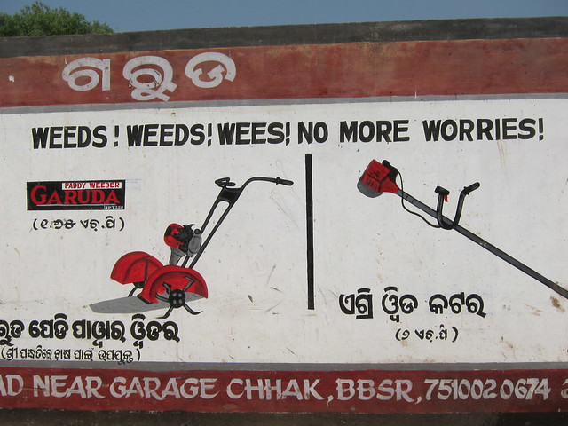Weeds! Weeds! Wees!