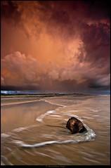 Adiabaticamente (Finasteride (Magro Massimiliano)) Tags: tramonto nuvole mare tronco fiumicino legno temporale onda maccarese finasteride passoscuro magromassimiliano colorannoottobre