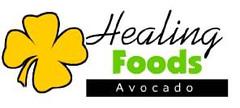 Healing Foods Logo