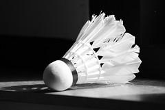 Shuttle (Jdolky) Tags: black bird sports sport birdie zwartwit sony feathers feather shuttle yonex badminton wit shuttlecock veren a230 shuttlecocks racketsport jdolky verenshuttle jeffreydolkens