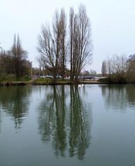 2011-03-12 | 44 | Hill's Meadow (Mark & Naomi Iliff) Tags: thames river hillsmeadow