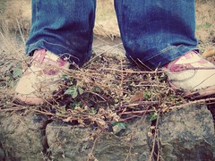(666words) Tags: pink blue brown white green feet nature grass leaves stone wall children sticks shoes child mud dirty jeans