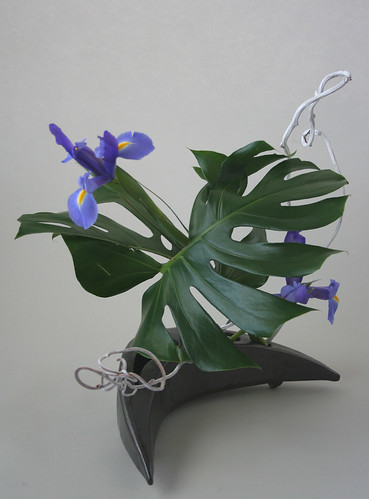 Ikebana with iris, monstera and kiwi vine