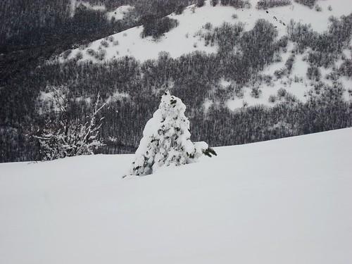 Schnee Sk 5