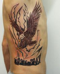 Eagle, Skyline