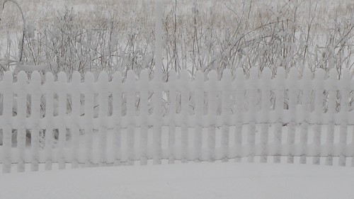 No, it isn't a white picket fence. by ricmcarthur