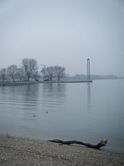 2010_0513AB (bridgsis) Tags: january bregenz