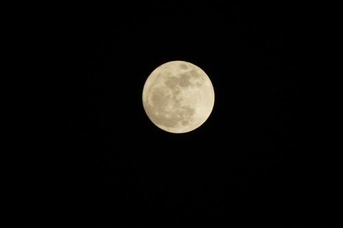 _DSC4283.JPG super moon 21:00 Tokyo. 2011.03.19