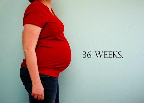 36 Weeks 02