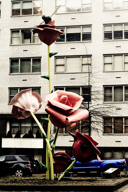 Park Ave Flowers 3 (1 of 1)
