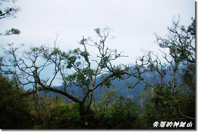 神趾山頭景觀
