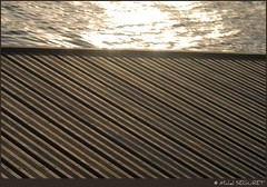 Raies et rayons / Lines and rays (Michel Seguret thanks you all for + 7.700.000 view) Tags: wood water lines agua eau wasser ray line rays holz acqua bois smrgsbord dragongoldaward flickrpopularphotographer