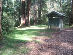 Olinda Falls Picnic Ground Photo