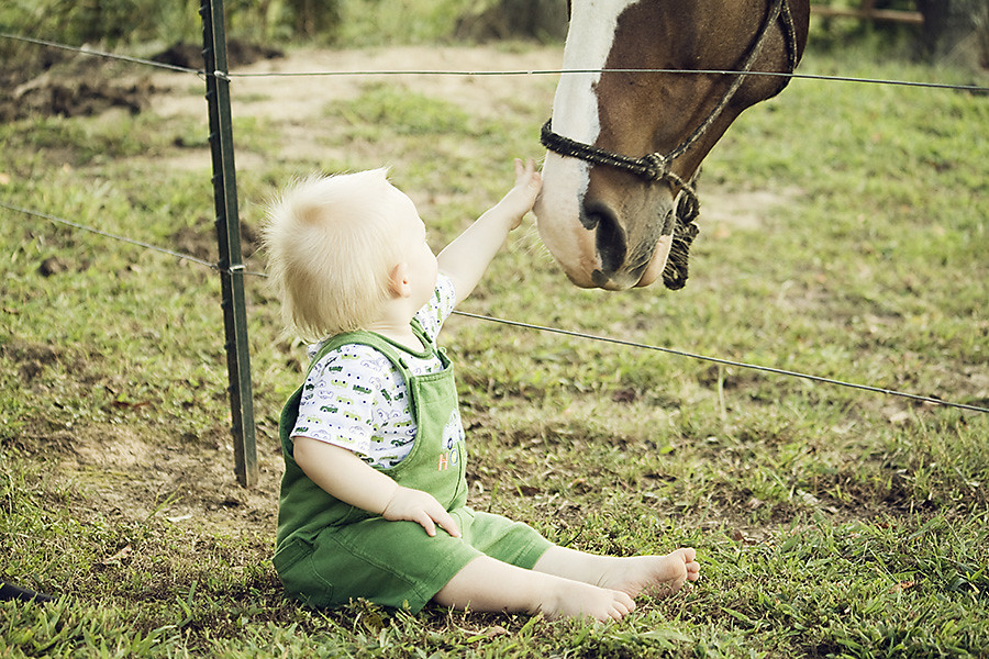 Meeting Mommy's Horse for the First Time :)