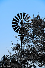 IMG_3669-Edit.jpg (taharaja) Tags: ranch house texas bend fort farm houston images richmond historic sugar land hdr goerge goergehistoricranchhoustonphotowalktexas